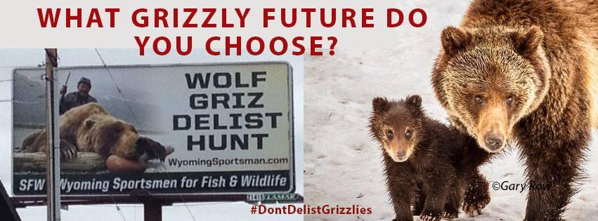 Don't Delist Grizzlies