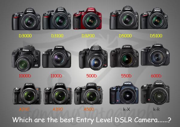 Choosing a Digital SLR camera for beginners ~ Digital Camera Review