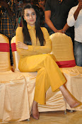 Trisha photos at Cheekati Rajyam event-thumbnail-1