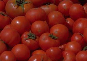 Glenn Cardwell Acid Food Alkaline Food