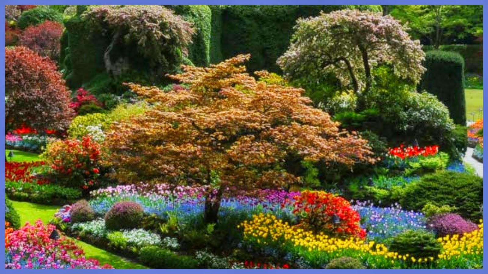Re -Train Your Brain To Happiness: Butchart Gardens, Vancouver ...