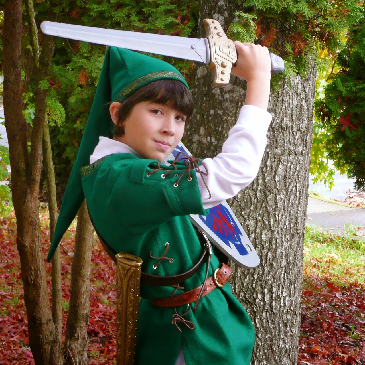 Zelda, costume, boy, kid, fun, sword, shield, Nintendo, video game, cosplay