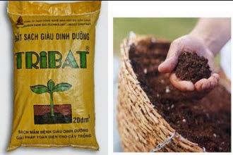 Bán đất sạch tribat ở hà nội, giá bán đất sạch tribat