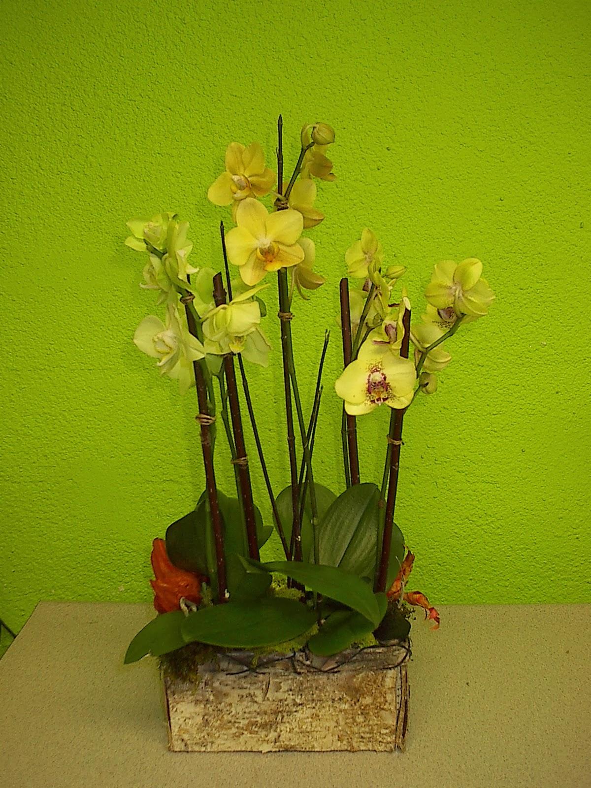 Las Vegas Flowers Premier Event Florists Soul Train Awards