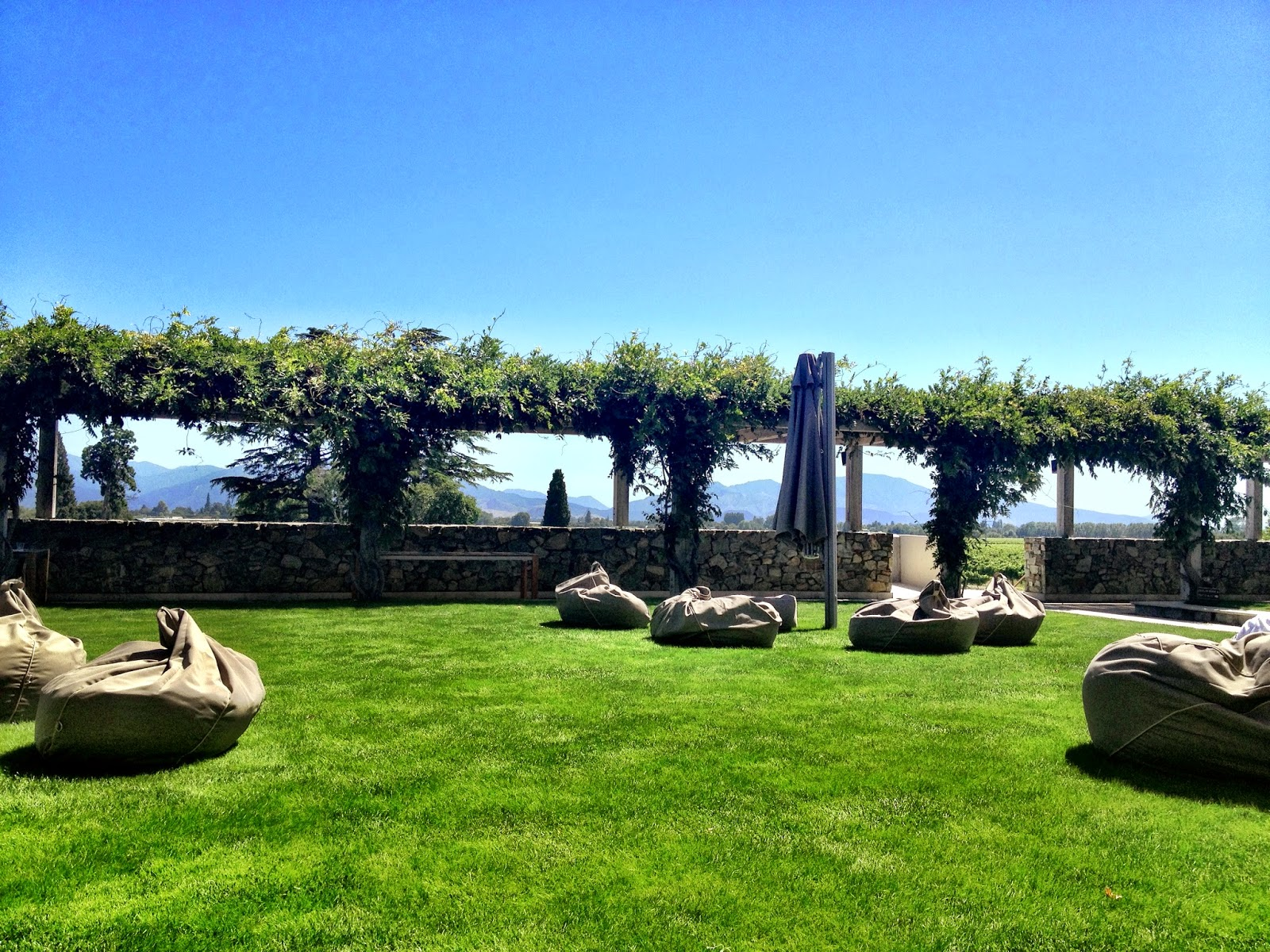 The perfect place to wine taste, and relax - Wither Hills, New Zealand