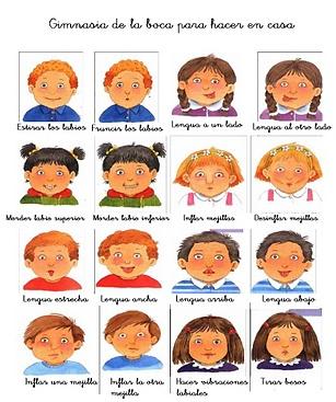 Ejercicios Orofaciales Estimulando La Lengua Fisioterapia