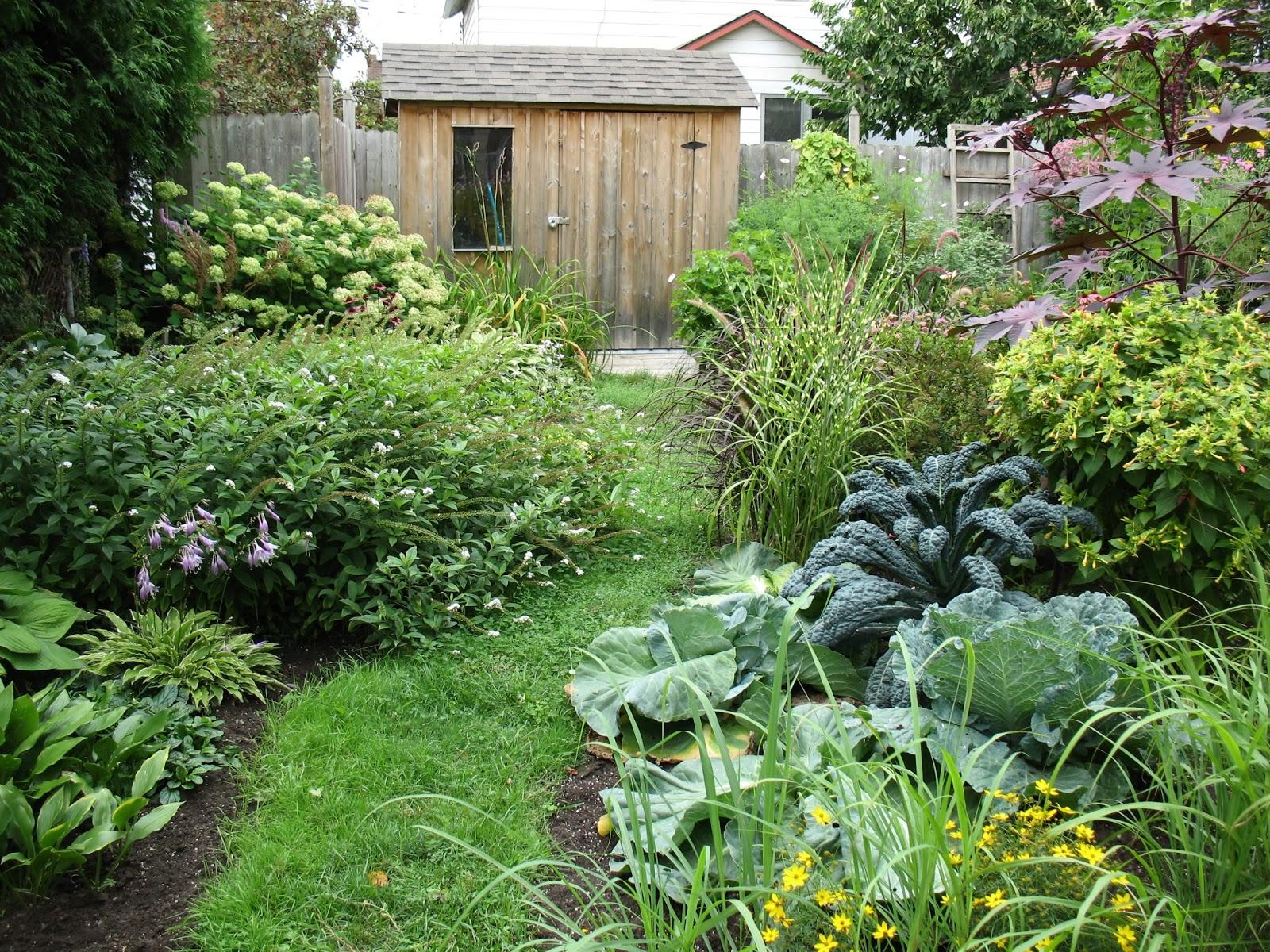 Les jardins des comestibles les comestibles for Amenager son jardin potager