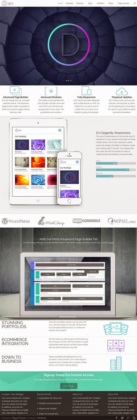 Divi wordpress theme professional multipurpose business - Divi theme ecommerce ...