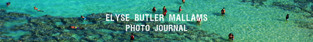 Elyse Butler Mallams - Hawaii Photographer