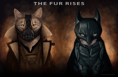 The Fur Rises
