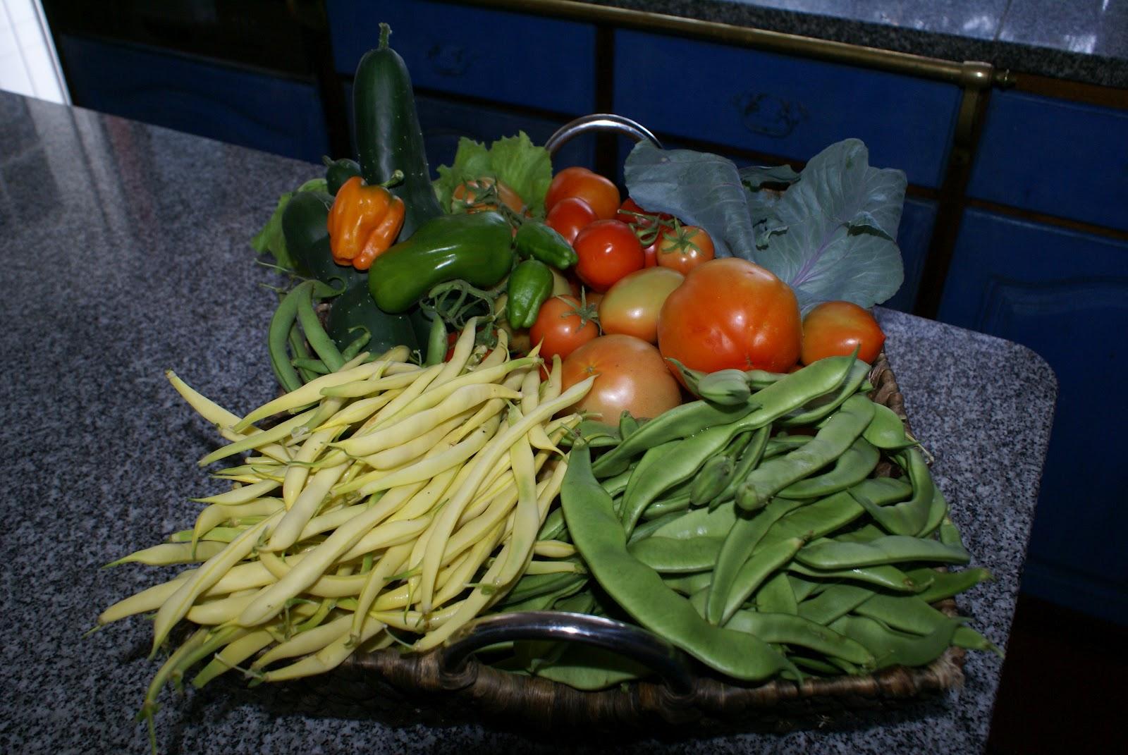 horta jardim e pomar:possível e retirar o máximo proveito e prazer das culturas