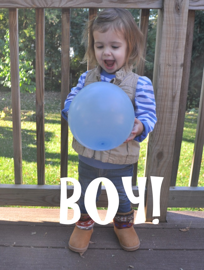 sibling gender reveal