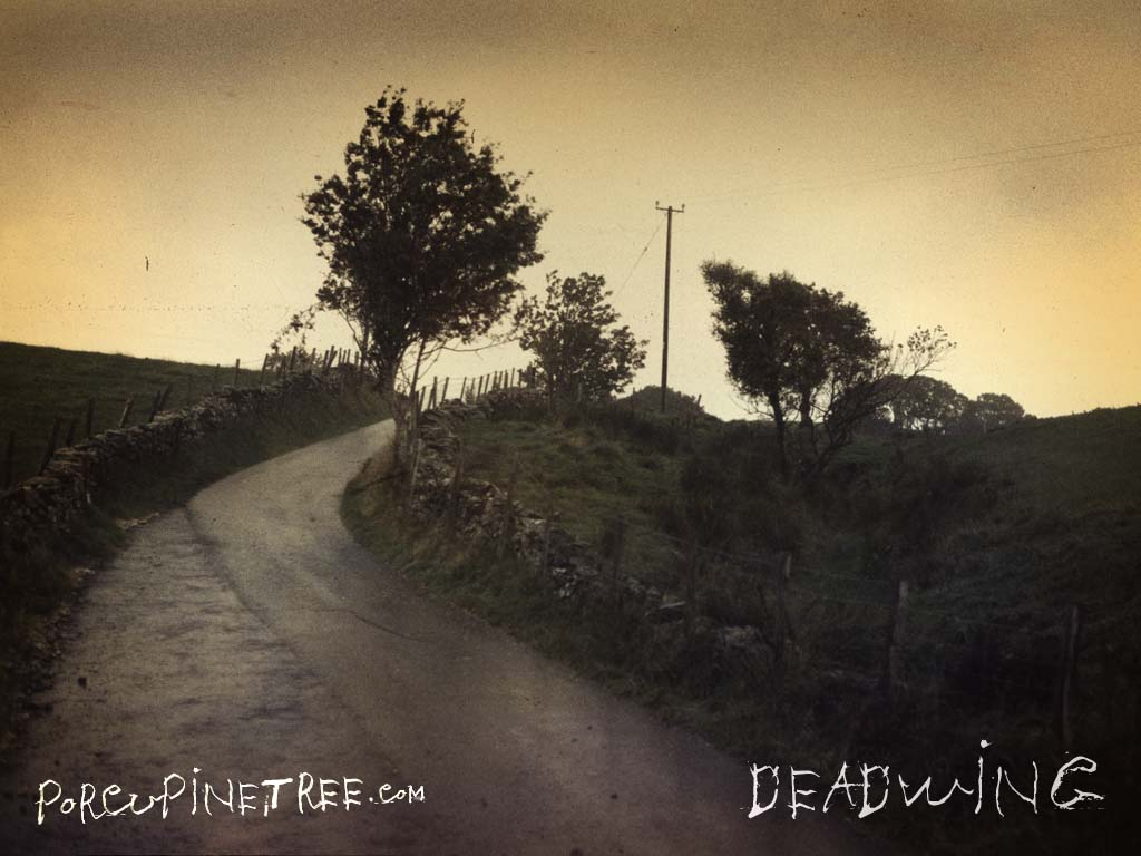Cover art of tree and roadway for band Porcupine Tree album Deadwing