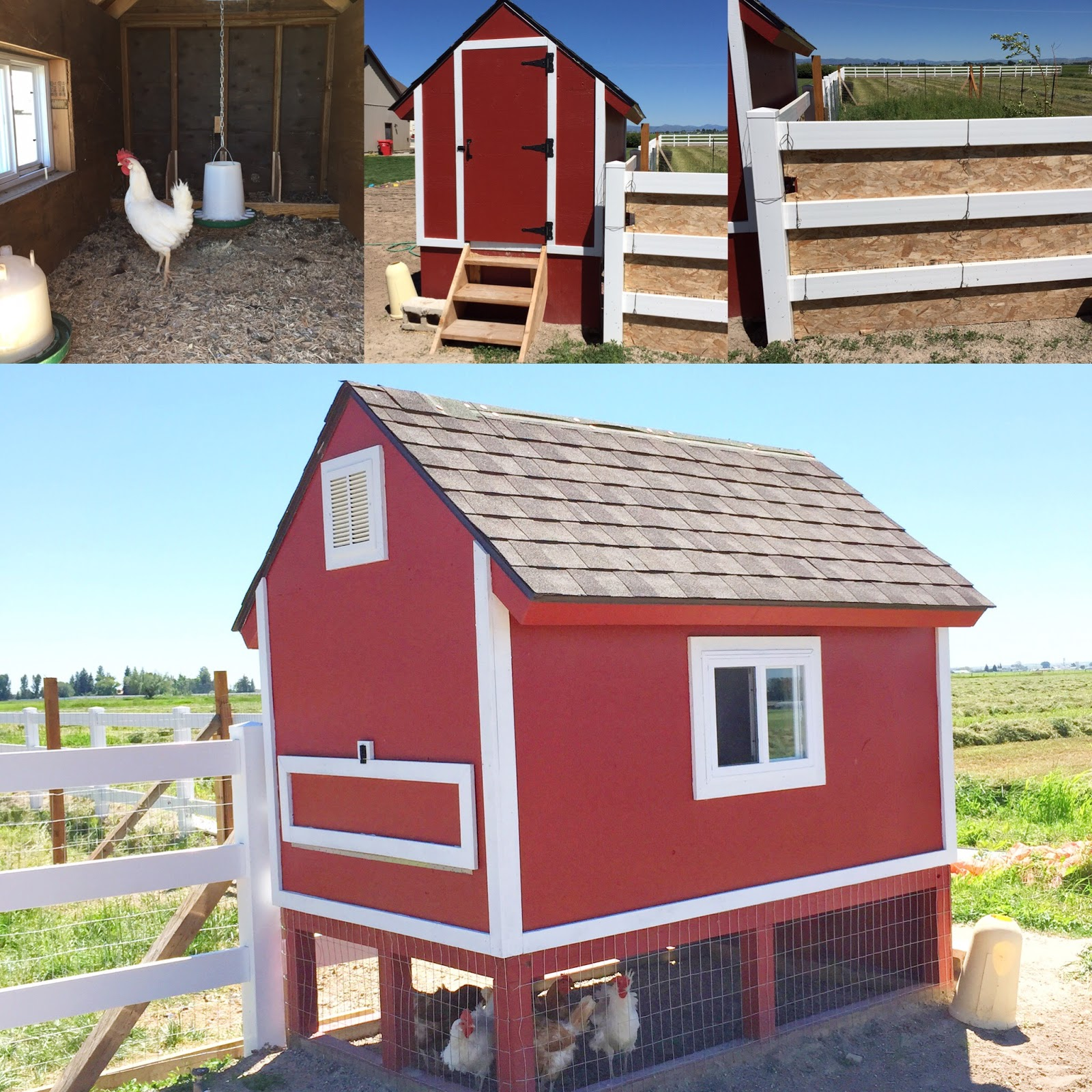 How to Build a Chicken Coop From Pallets | A Vision to Remember All ...