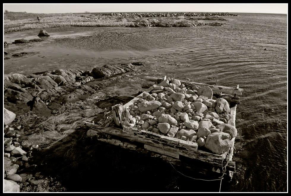 Nova Scotia; Rocks; Harbor