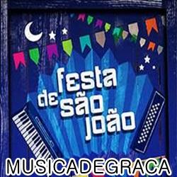 Festa de São João (2013)