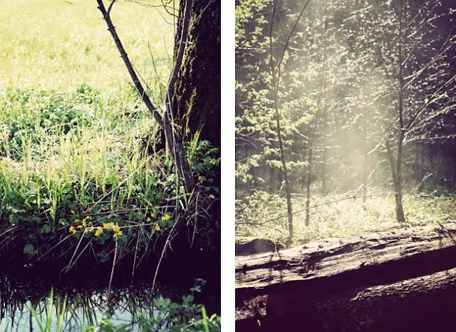fotograf innsbruck tirol fotografin photograph
