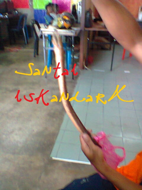 Santai-iskandarX-Flat-Ijau-Din-balik-memancing-Belut-iskandarx.blogspot.com