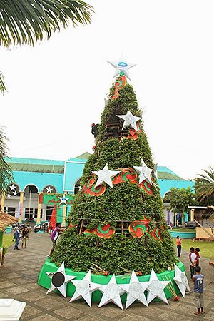 Albay's Camote Christmas Tree