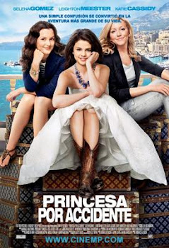 Poster de Princesa por Accidente