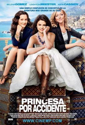 descargar Princesa Por Accidente – DVDRIP LATINO