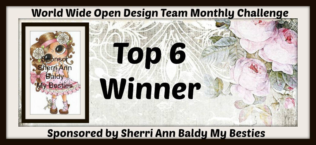 World Wide Open Design Team Challenge