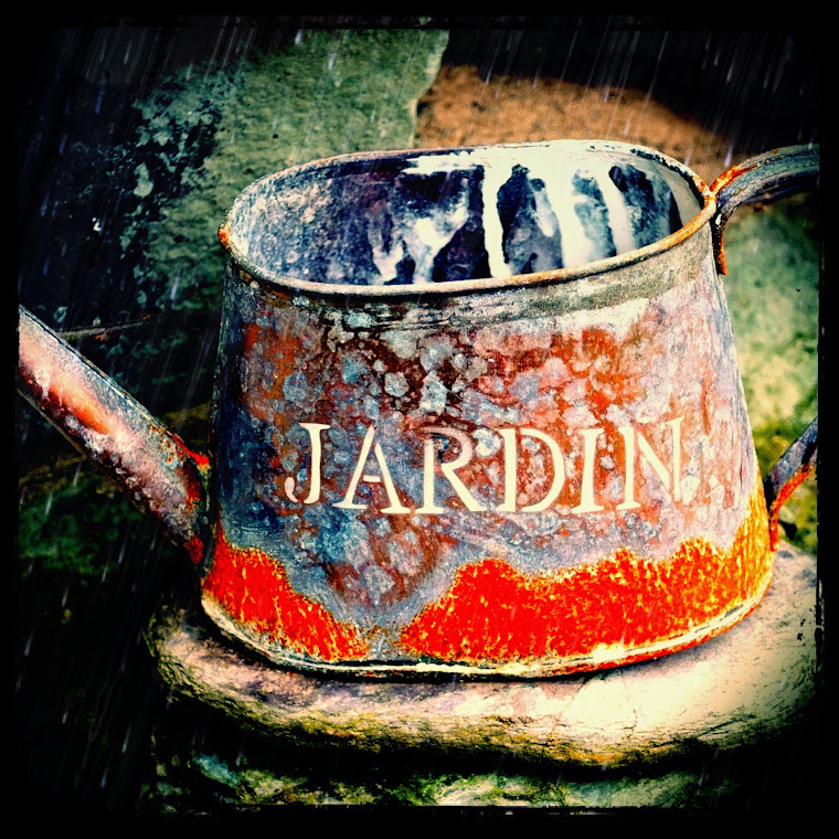 Vintage Jardin Watering Can from Paris