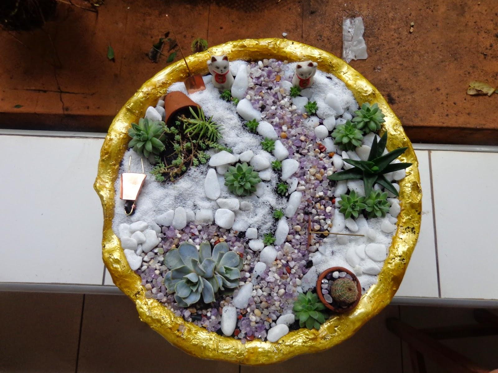 Di?rio de uma Sementeira: Mini-jardim de cactos e suculentas
