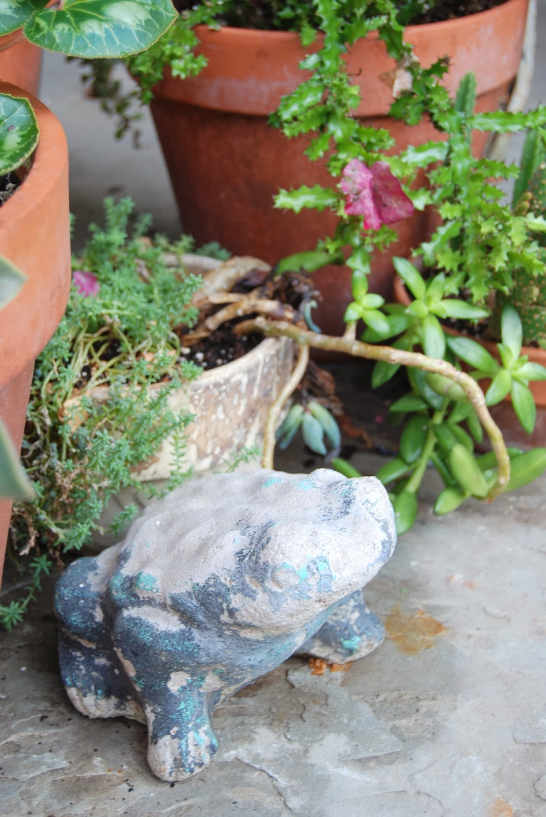 Vintage Garden Frogs 2