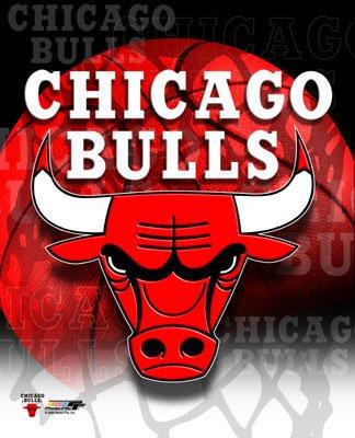 Chicago Bulls Profile Basketball And Nba Inside