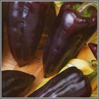 Сладкий перец сорт «Черный сахар»