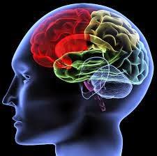 ketajaman otak