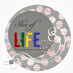 Co-Founder of Slice of Life Challenge at Two Writing Teachers