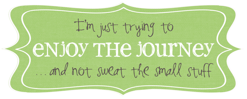 Trying to enjoy the journey....  {and not sweat the small stuff}