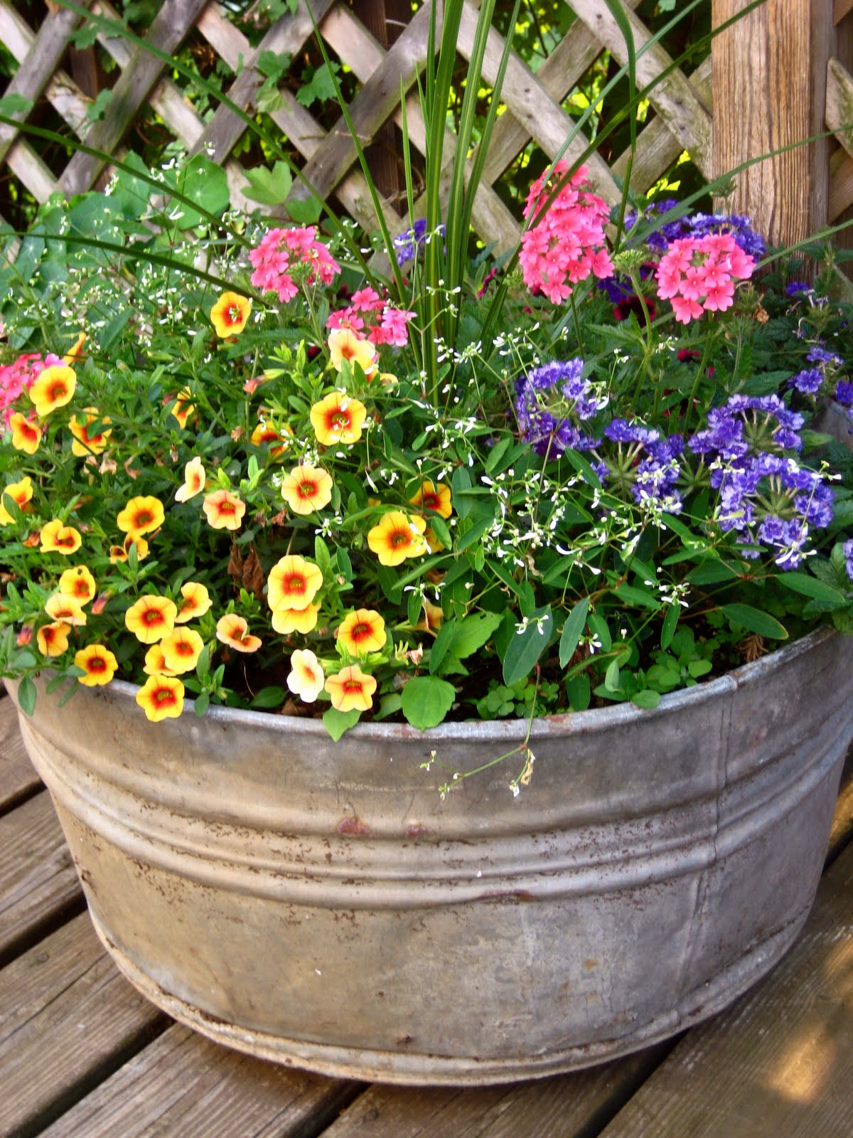 meadow muffin gardens container planting ideas