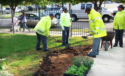 uptown update cleanslate landscaping