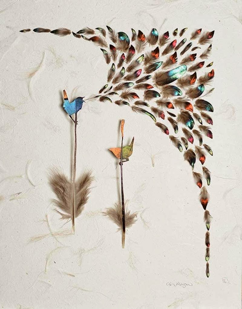 Feather Art by Chris Maynard