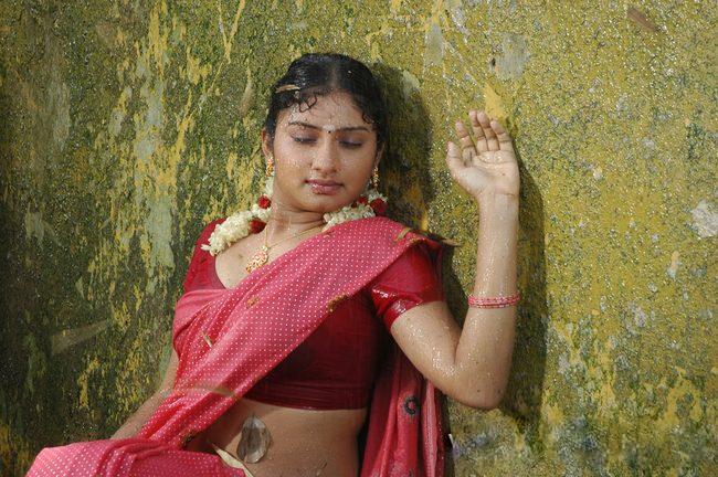 Indian Masala Tamil Aunty Idupu Wet Saree Thoppul Stills