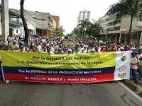 """Colombia: """"Defendemos nuestro trabajo, nuestra vida y nuestra región"""""""