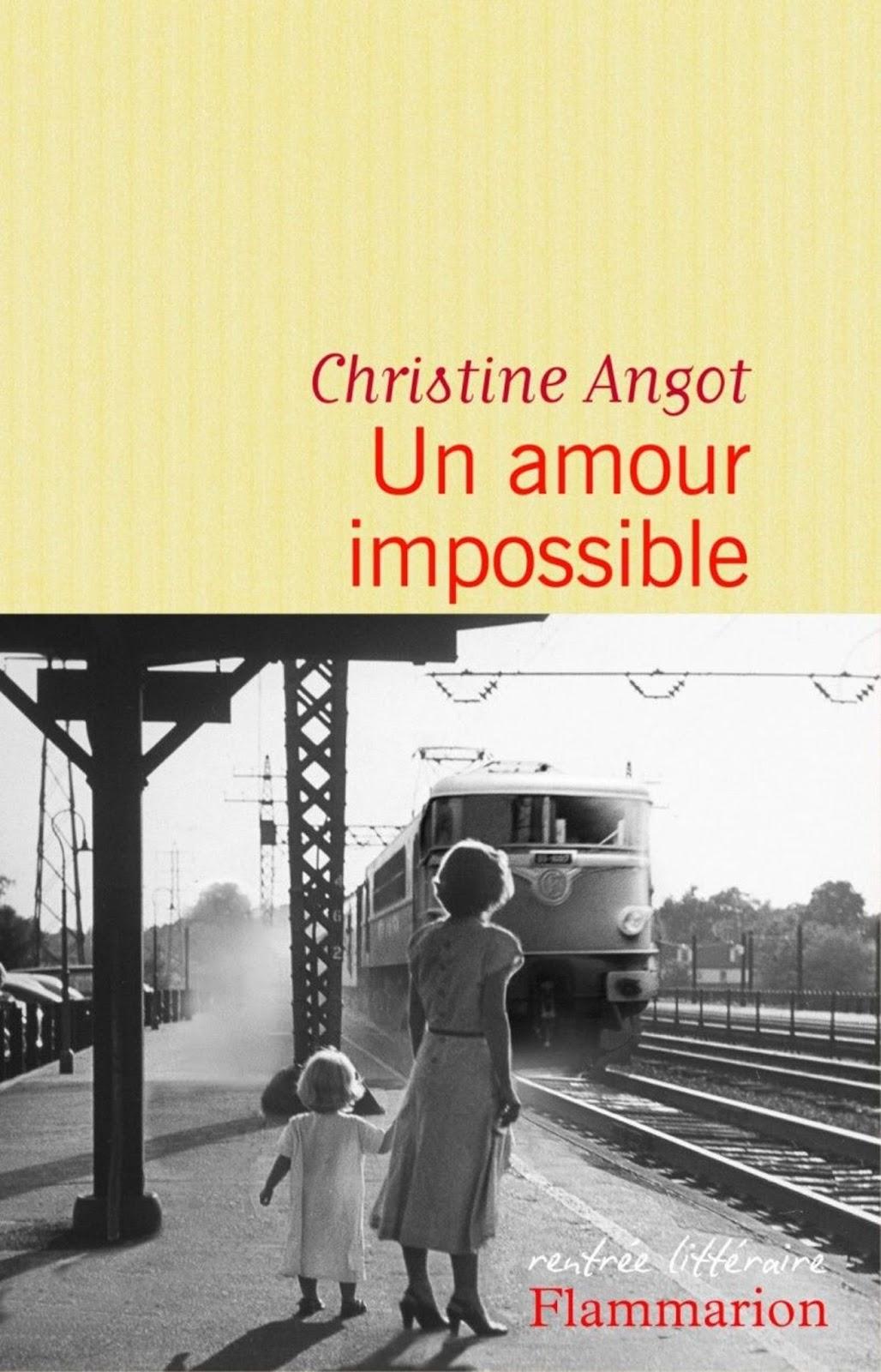 livre amour impossible