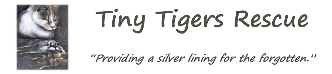 Tiny Tigers Rescue
