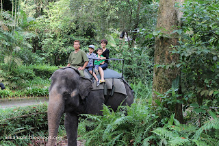 singapore zoo with kids