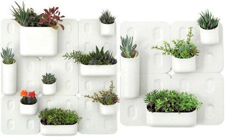 Decora el hogar macetas y plantas para el interior del hogar for Paredes de jardin decoradas