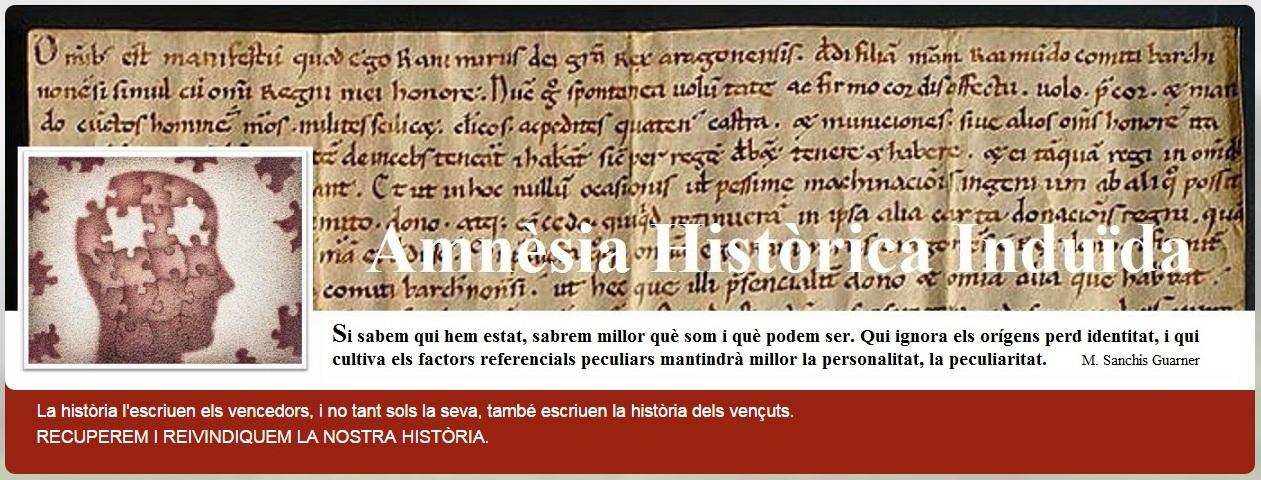 Amnèsia Històrica Induïda