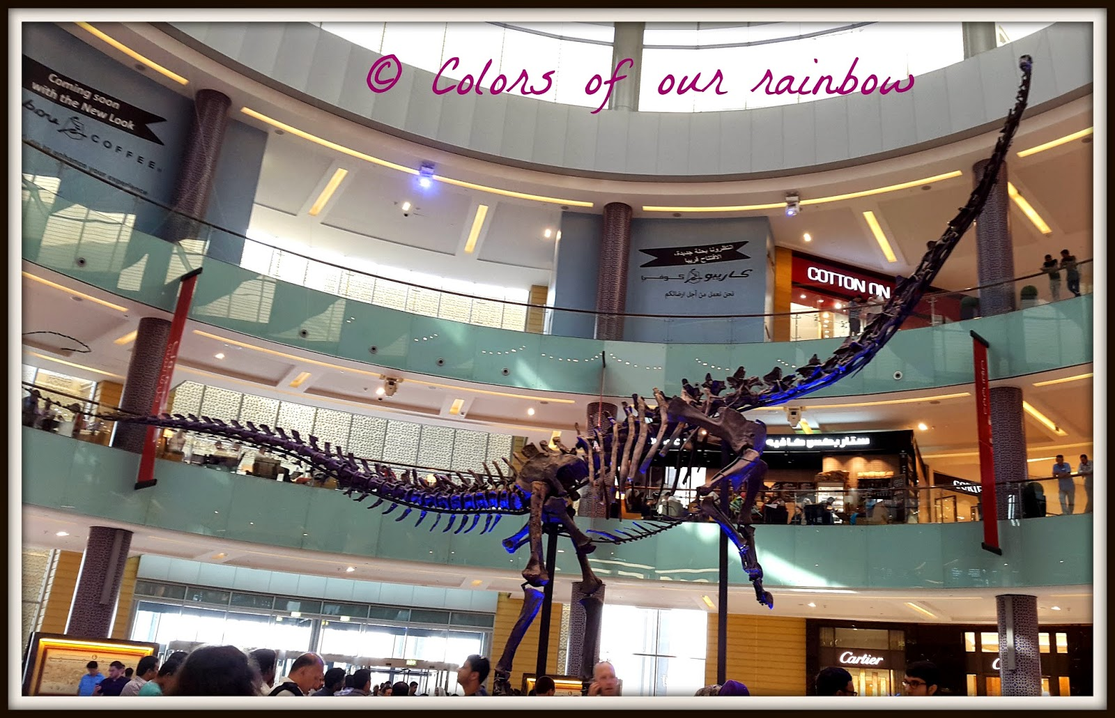 Dinosaur remains at Dubai Mall
