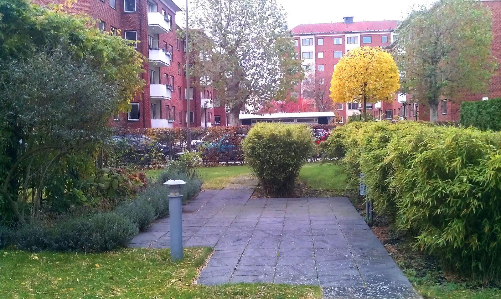 Öarnas trädgårdsplanering: smart trädgård för bostadsrättsföreningen