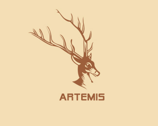 proposal for artemis sportswear company •proposal for artemis sportswear company for cutting operational expenses to  increase profit margins some ideas as a business, artemis can cut down the.