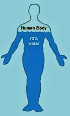 Human body is 70 percent water
