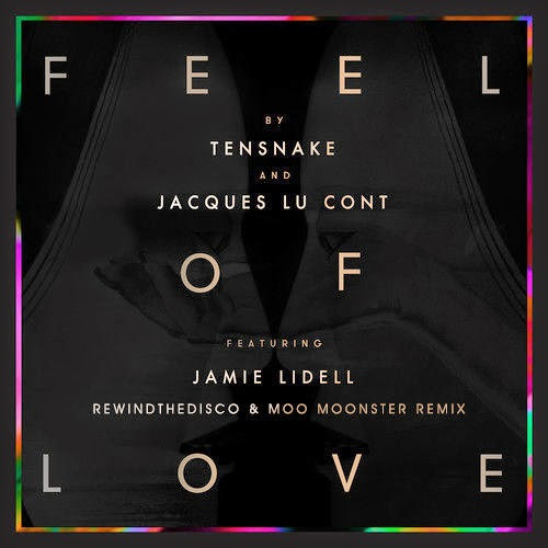 Tensnake & Jacques Lu Cont - Feel Of Love (Rewindthedisco & Moo Moonster Remix)