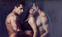 Box Office Collections: Hate Story  Budget Opening Day